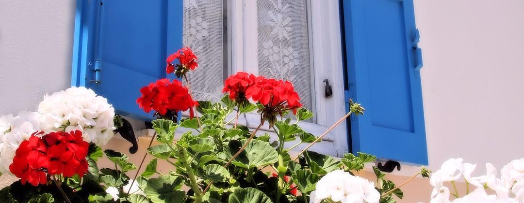 Villa Flora samos apartment garden